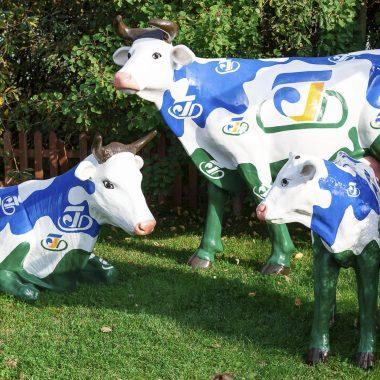 Комплект дизайнерских коров
