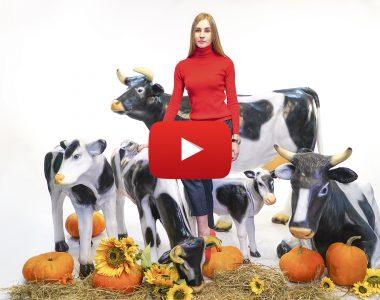 Комплект из фигуры коровы и двух небольших телят